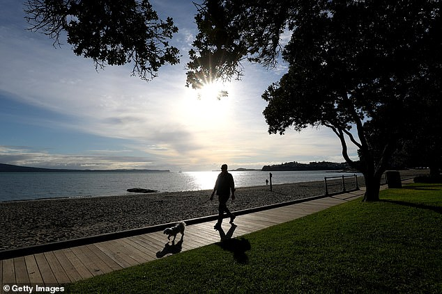 A man walks his dog under level 3 restrictions along Kohimarama Beach on August 17