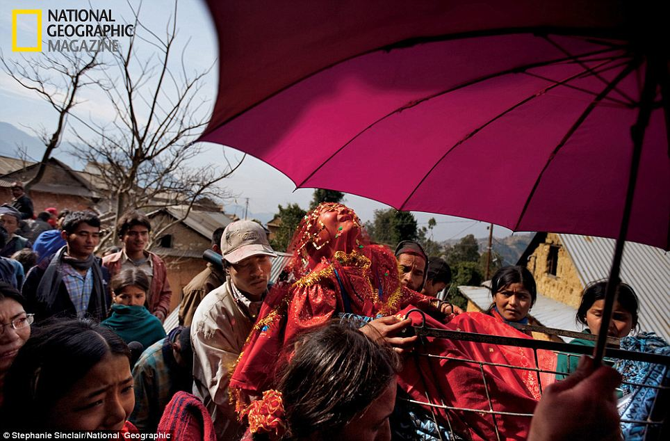 Wailing in protest: Surita, 16, cries as she leaves her family home, shielded by a traditional wedding umbrella and carried in a cart to her new husband